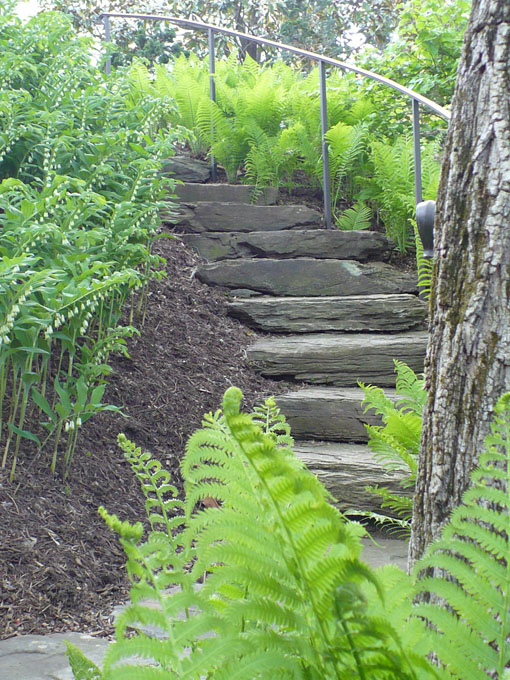 Image of stairs