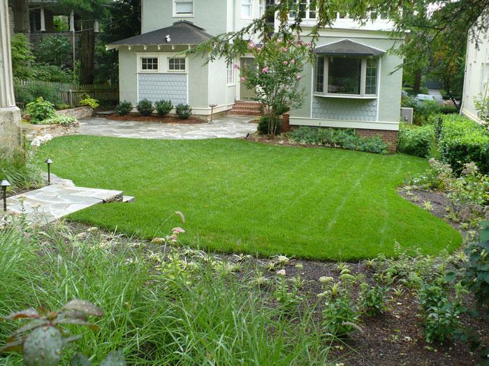 backyard-back-after