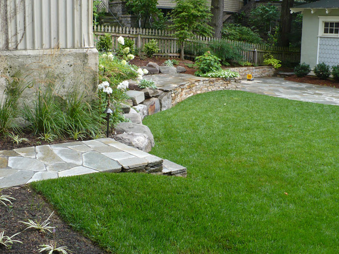 backyard-back2-after