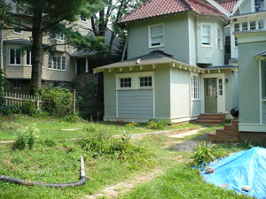 backyard-back2-before