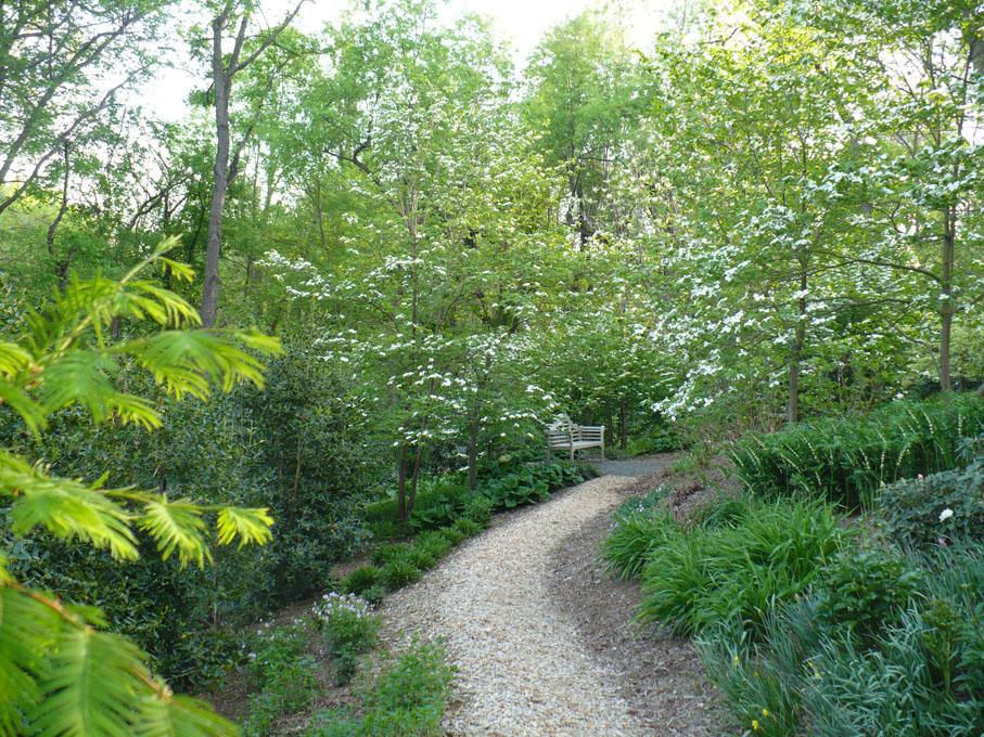 Image of path