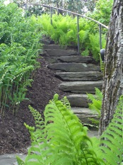 Image of natural stairs