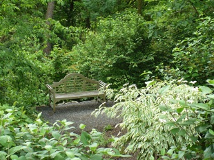 Image of garden bench