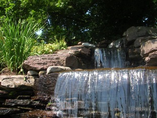 Pikesville Waterfall and Plantings III