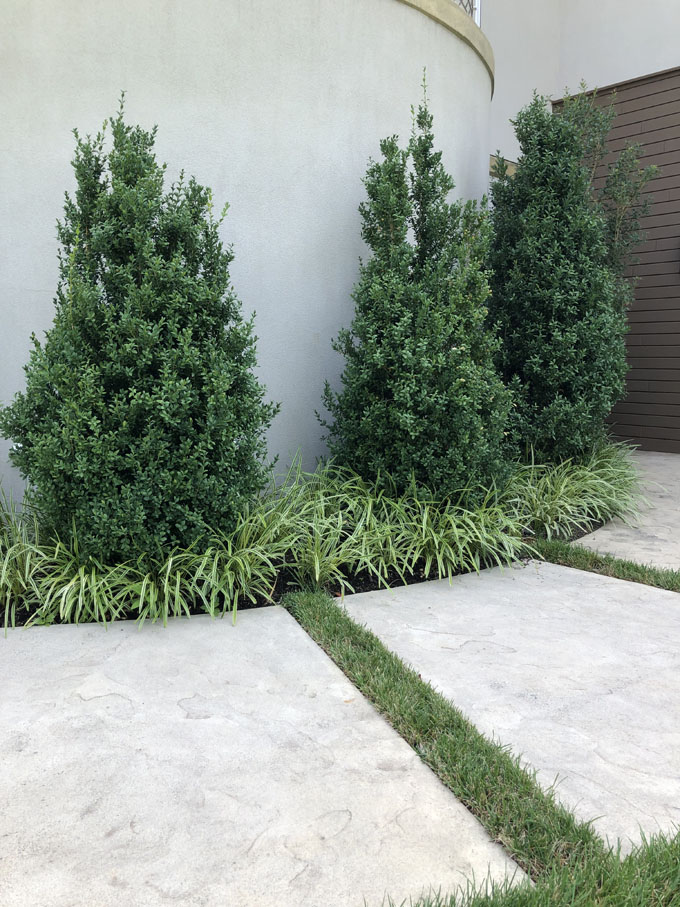 image of landscaping in baltimore